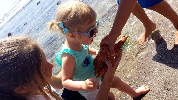 Kiddos show Addy a sea star...she's ready to eat it!