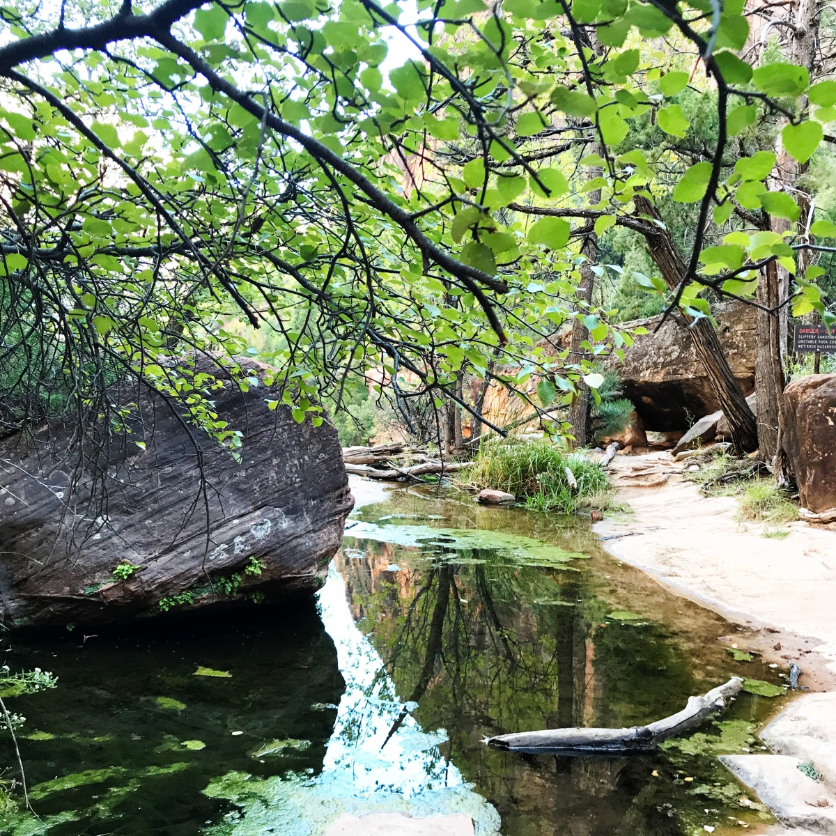 Hiking The Emerald Pools Of Zion National Park Barry